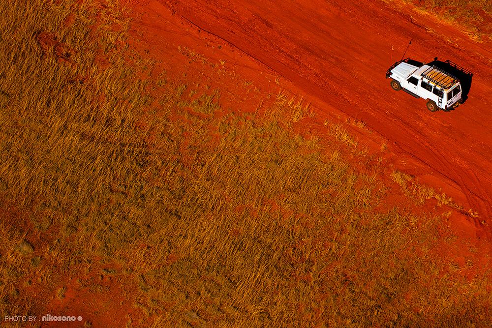 Australian Biotope 24 / ニコソノ