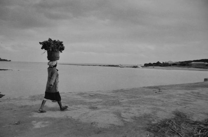 あの頃~1959年沖縄の空の下で~ / Koji Inoue