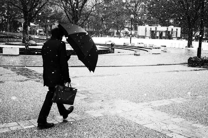 よりみち、みちくさ、さんぽ道〜写真散歩で出会う素敵なシーン / Osanpo Foto Club