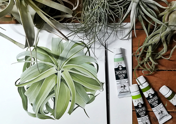 植物と共に展 / サオリ オオワダ